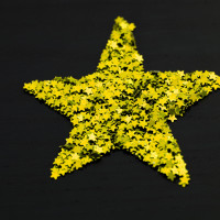 Composite golden Christmas star
