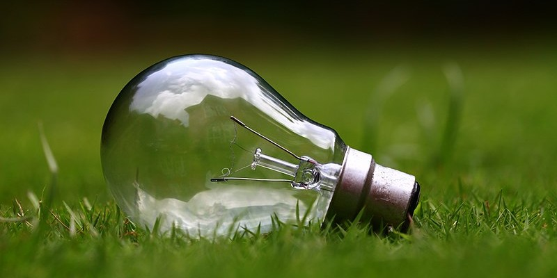 800px-Light_bulb_on_green_grass_(Unsplash)